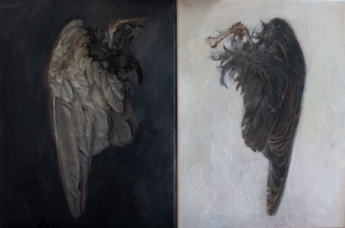 """Wings"" oil on canvas, Diptych,  12 x 18,  Sold"